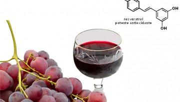 resveratrol