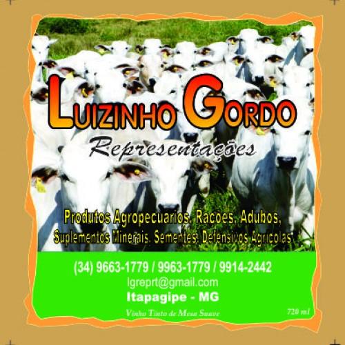 LUIZINHO REPRESENTACOES